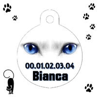 Médaille pour chat blanc Yeux bleus personnalisée avec nom et n°de téléphone