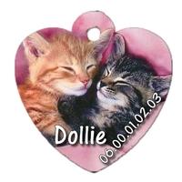 Médaille pour chat chaton personnalisée avec nom, numéro de téléphone....