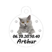 Médaille pour chat  Chartreux personnalisée avec nom, numéro de téléphone....