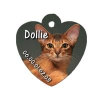 Médaille pour chat Abyssin personnalisée avec nom, numéro de téléphone....