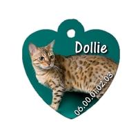 Médaille pour chat Bengal personnalisée avec nom, numéro de téléphone....