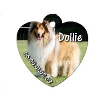 Médaille coeur pour chien Colley personnalisée avec nom, numéro de téléphone