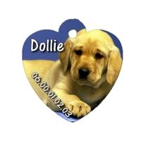 Médaille coeur pour chien Labrador personnalisée avec nom, numéro de téléphone