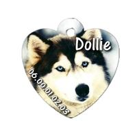 Médaille coeur pour chien Husky personnalisée avec nom, numéro de téléphone
