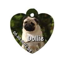 Médaille coeur pour chien Carlin personnalisée avec nom, numéro de téléphone