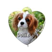 Médaille coeur pour chien Cavalier king charles personnalisée avec nom, numéro de téléphone
