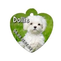 Médaille coeur pour chien Bichon frisé personnalisée avec nom, numéro de téléphone