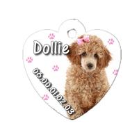 Médaille coeur pour chien Caniche personnalisée avec nom, numéro de téléphone