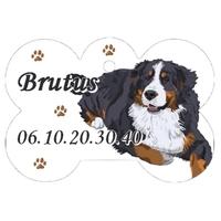 Médaille pour chien Bouvier bernois personnalisée avec nom, numéro de téléphone