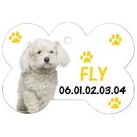 Médaille pour chien Bichon  frisé personnalisée avec nom, numéro de téléphone