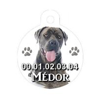 Médaille pour chien Cane corso personnalisée avec nom, numéro de téléphone