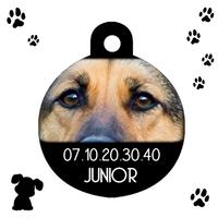 Médaille ronde chien Berger allemand personnalisée avec nom et n° de téléphone