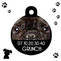 Médaille ronde chien Bouledogue personnalisée avec nom et n° de téléphone