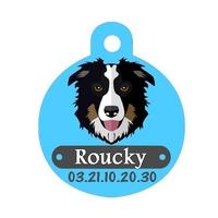 Médaille pour chien Border collie personnalisée avec nom, numéro de téléphone