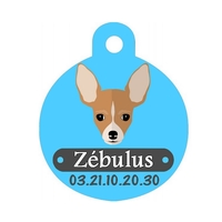 Médaille pour chien Chihuahua personnalisée avec nom, numéro de téléphone
