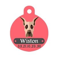 Médaille pour chien Dogue allemand personnalisée avec nom, numéro de téléphone