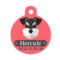Médaille pour chien Schnauzer personnalisée avec nom, numéro de téléphone