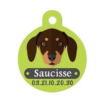 Médaille pour chien Teckel personnalisée avec nom, numéro de téléphone