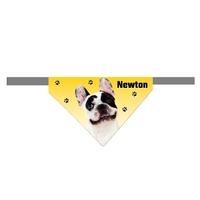 Bandana scratch pour chien Bouledogue français personnalisé avec le nom de votre animal