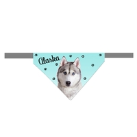 Bandana scratch pour chien Husky personnalisé avec le nom de votre animal