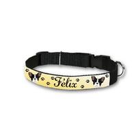 Collier pour chien Bouledogue français personnalisé avec son nom