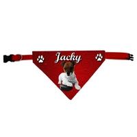 Collier bandana chien Jack russel personnalisé avec le nom de votre animal