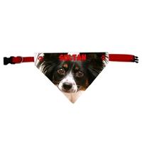 Collier bandana chien Papillon personnalisé avec le nom de votre animal