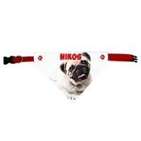 Collier bandana chien Carlin personnalisé avec le nom de votre animal