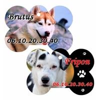 Médaille os pour animaux personnalisée avec photo, nom et n° de téléphone