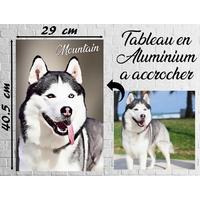 Tableau photo en aluminium avec votre chien ou chat en dessin !