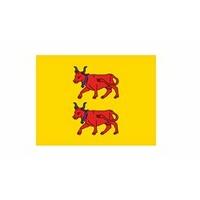 Drapeau Bearn (Province)