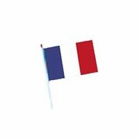 Lot de 100 drapeaux France 10x15 cm