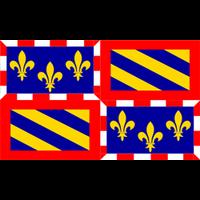 Drapeau Bourgogne (Province)
