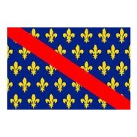 Drapeau Bourbonnais (Province)