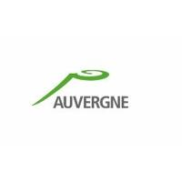 Drapeau Région Auvergne