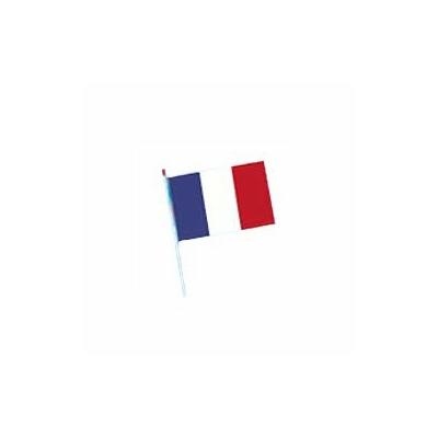 Lot de 100 drapeaux France 20x30 cm