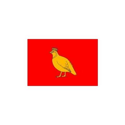 drapeau aunis