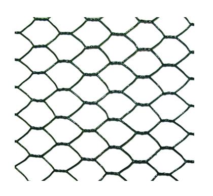 254-maille-hexagonale-25mm-plastifie-vert