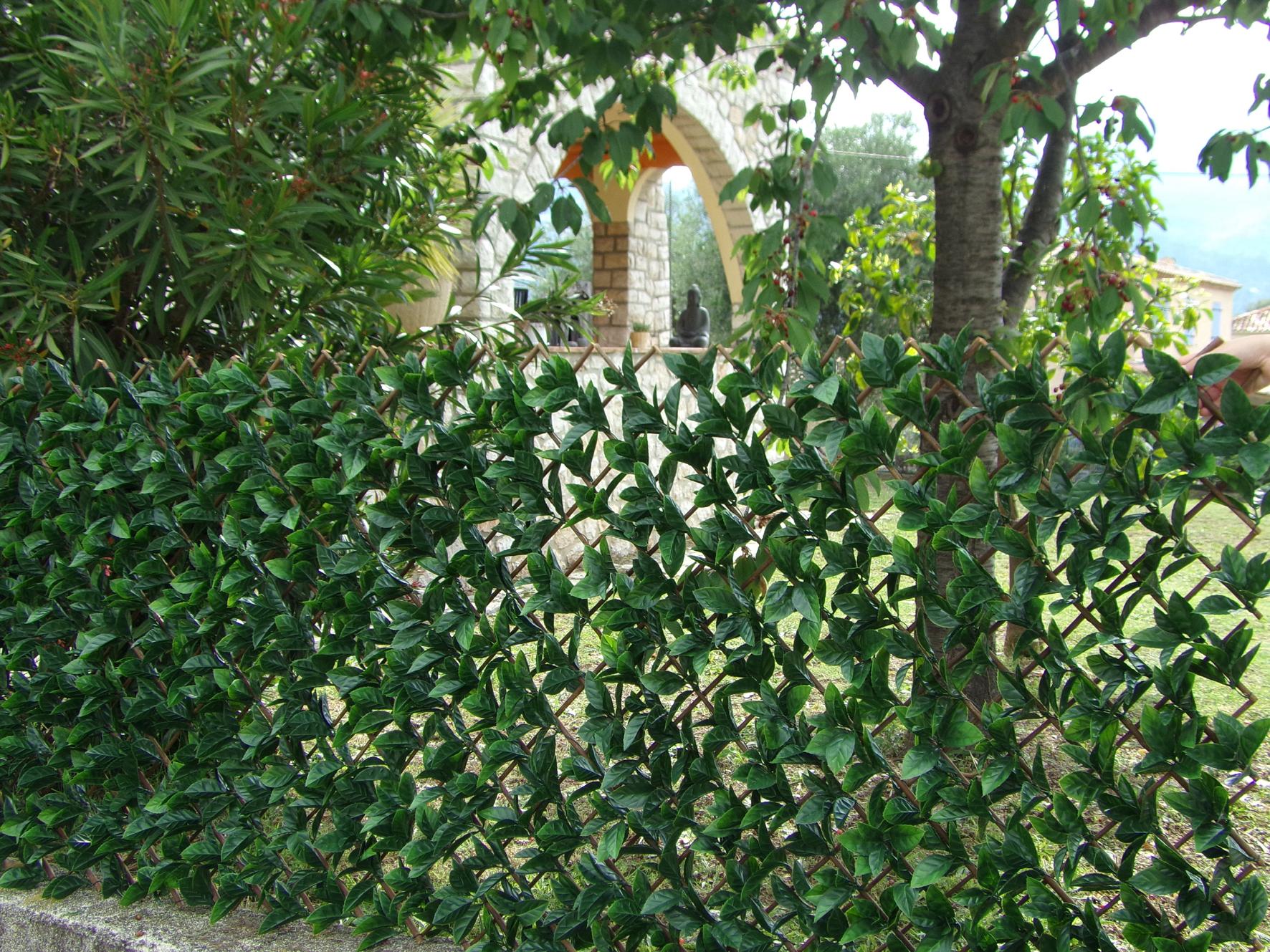 treillis osier extensible avec feuilles laurier cerise jardin treillis plastique treillis. Black Bedroom Furniture Sets. Home Design Ideas
