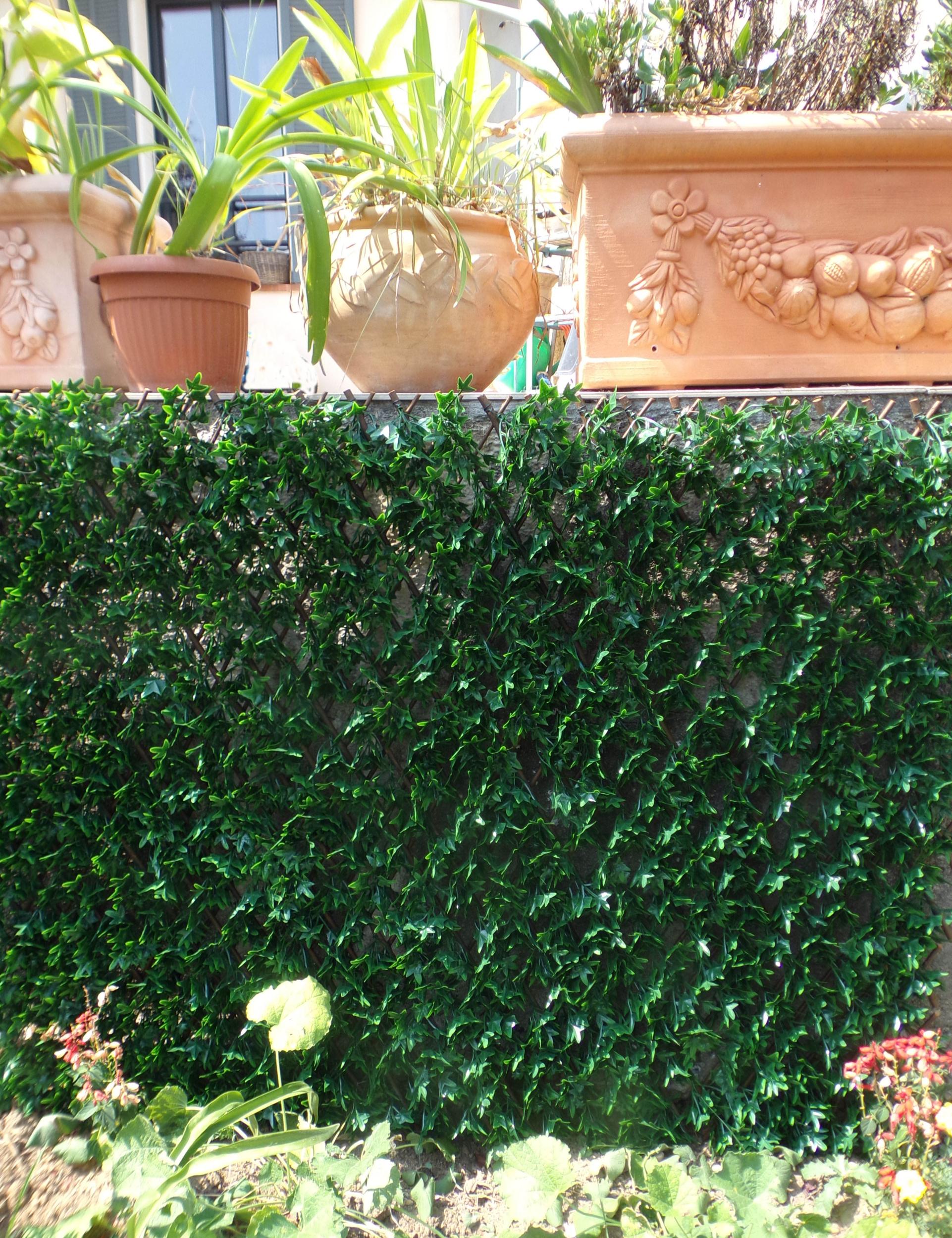 Brise Vue En Lierre treillis osier feuilles - imitation lierre