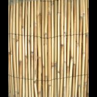 Clôture Paillon Pelé