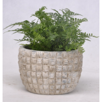 Cache pot design en ciment