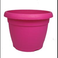 Pot de fleurs - Fuschsia