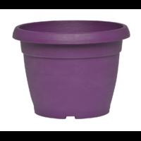 Pot de fleurs - Prune