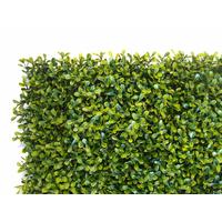 Mur Végétal Artificiel - Imitation Buis court