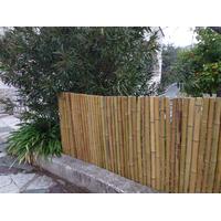 Canisse Bambou EPAIS - Diam 3-3,5 cm