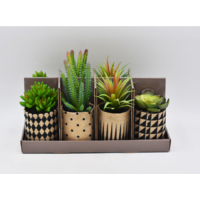 Lot de 8 plantes artificielles assorties - Style cactés - Ø 8 x H 12
