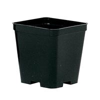 Filet de 25 pots noir culture - 8 x 8 H 9 cm