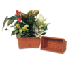617-maxi-jardiniere-avec-sous-jardiniere-marron