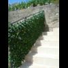 800-treillis-osier-avec-feuilles-jasmin